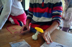 Taller de micología para niños