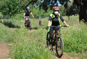 Babel Nature- E-bike Aracena